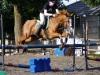camelot-riding-apr03