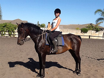 news-horsenews1