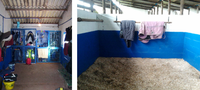 trackroom-stables