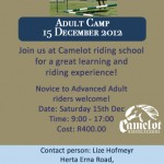 Adult Camp ad info2
