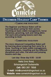 Camelot Camp ad info
